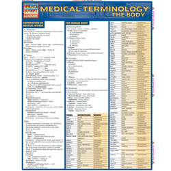 Barcharts: Medical Terms, The Body