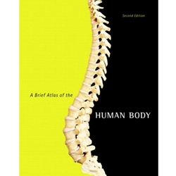 A BREIF ATLAS OF THE HUMAN BODY